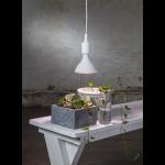 LED spuldzes augu audzēšanai