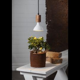 LED augu lampa ar silti baltu gaismu E27 16W 12x13,25cm 357-35