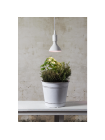 LED augu lampa ar sarkanu-zilu gaismu E27 16W 12x13,25cm 357-36