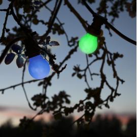 LED Spuldze zila A55 B22 0,9W 5,5x9,6cm 356-49-5