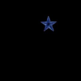 Lampiņu virtene sudraba 55 LED 90x120cm Star curtain 2006-76-1
