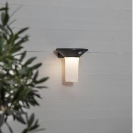 LED Āra gaismeklis uz saules baterijām pelēks 0,21W 16x16cm Valta 481-16