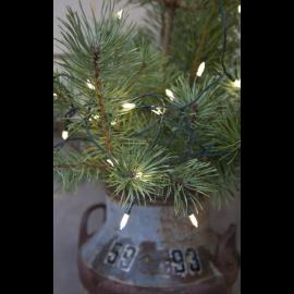 Ziemassvētku LED Āra virtene Zaļa 150cm 80 LED Lampiņas 445-15