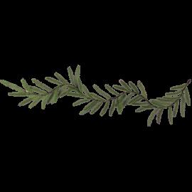 Ziemassvētku Vainags 10cm 612-73